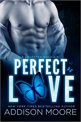 Perfect Love (Celestra Series)