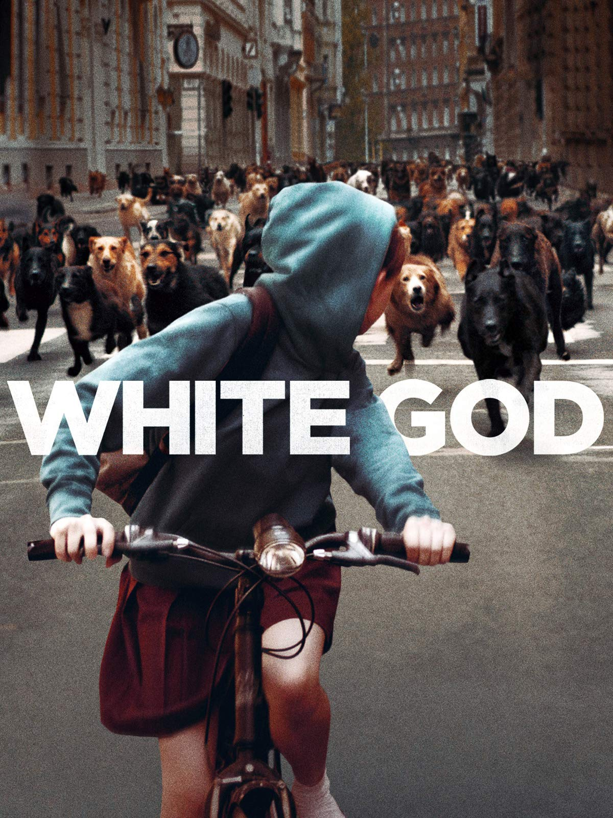 White God on Amazon Prime Video UK