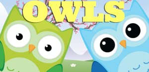 Owls - A Matching Game for Kids from Tiny Starship