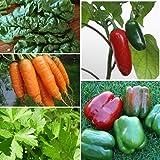 Certified Organic Gardener's Seed Assortment (10 Varieties)- All Non-GMO, Organic