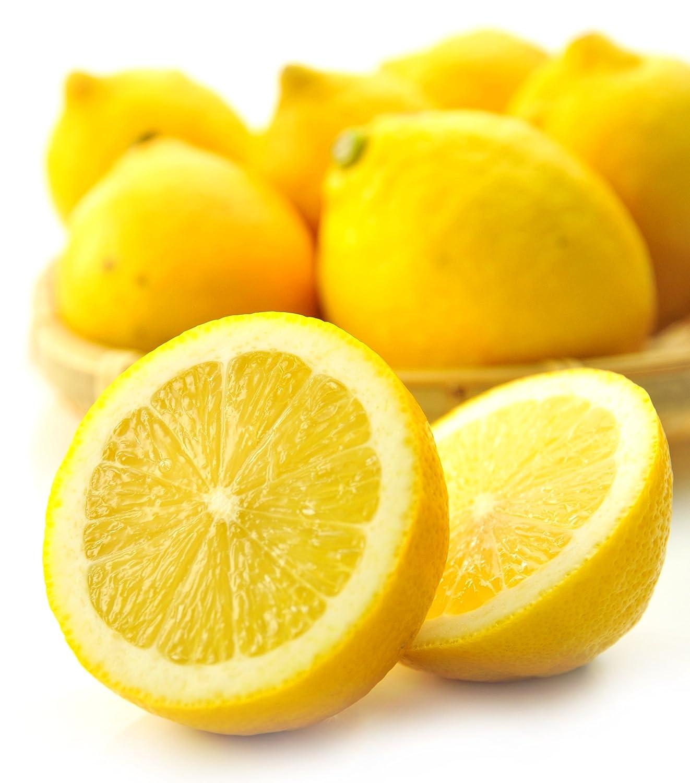 国産 レモン 1kg 有機肥料栽培 防カビ剤不使用 れもん