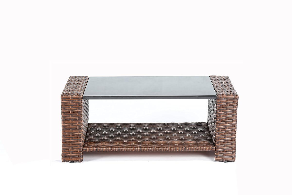 Baner Garden (N87-BR) 4 Pieces Conversational Outdoor Furniture Complete Patio Cushion Wicker Rattan Garden Set, Brown