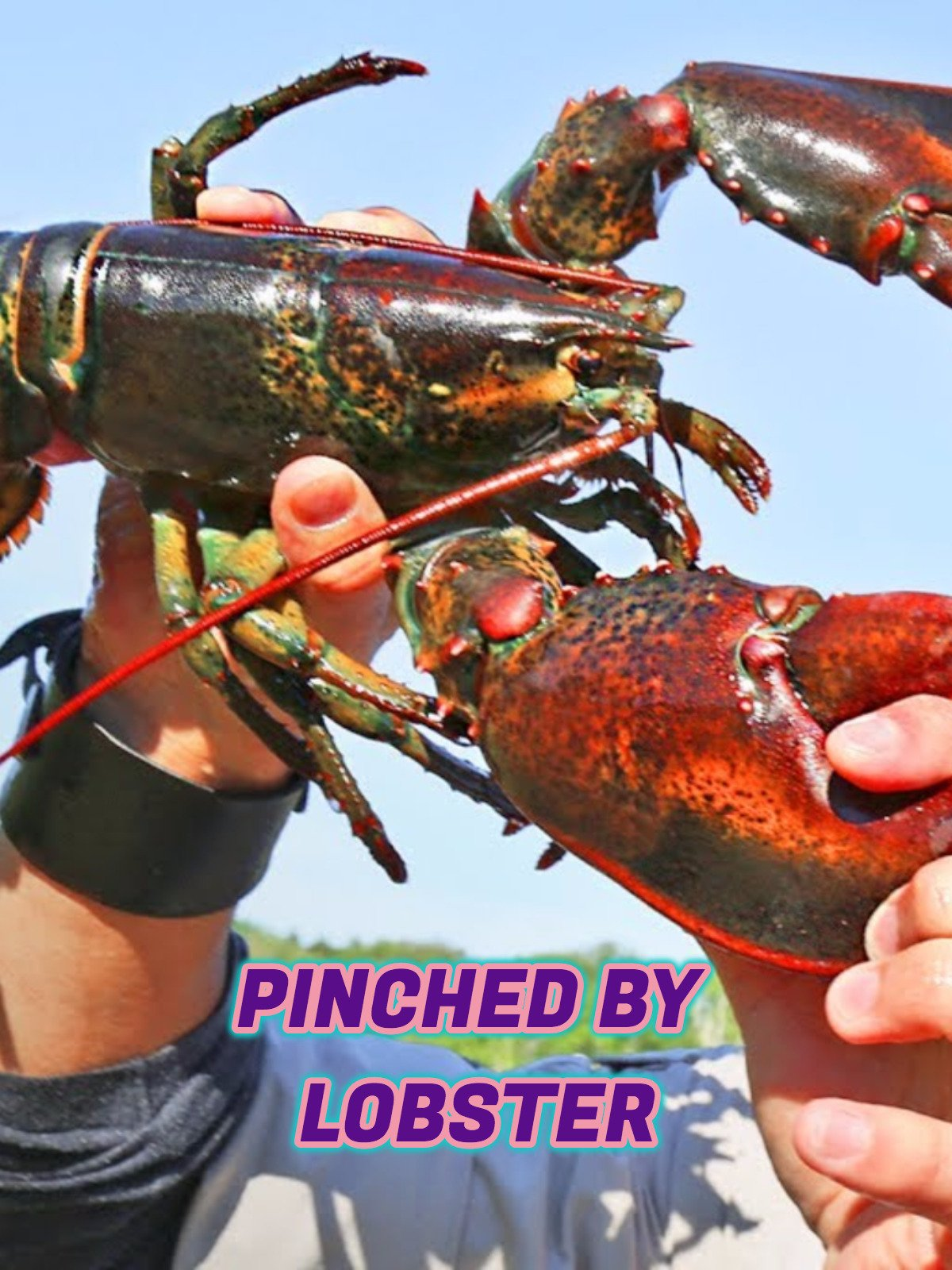 Pinched by Lobster on Amazon Prime Instant Video UK
