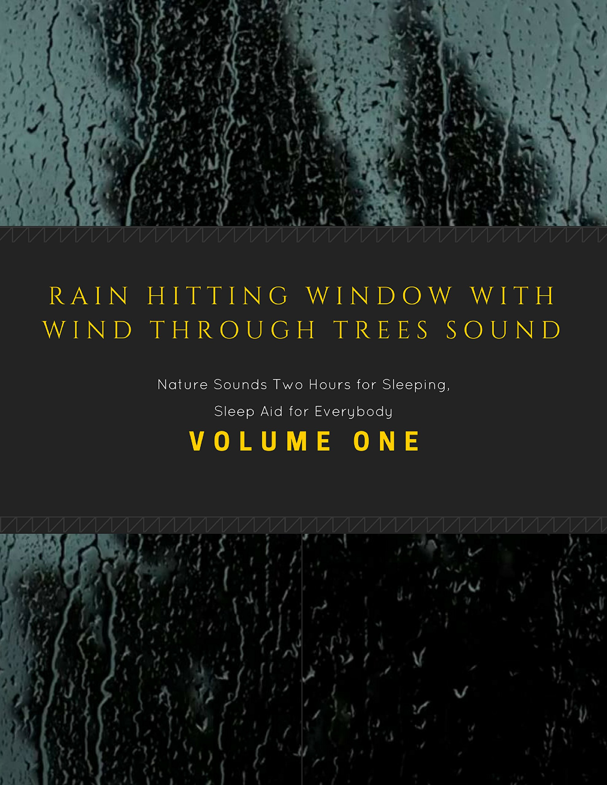 Rain Hitting Window with Wind Through Trees Sound