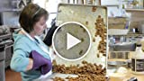 The Well Dressed Nut: On a Mission to Make Nuts More...