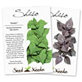 Shiso Seed Packet Duo (Green Shiso & Red Shiso) Non-GMO Seeds by Seed Needs