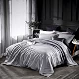 Dazzfond Duvet Cover King, Egyptian Cotton 3 Piece Luxury Bedding Set- Zipper Closure & Corner Ties, Solid Color Breathable Washable Comforter Protector (Ice Silver), (Color: Ice Silver, Tamaño: King)