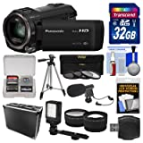 Panasonic HC-V770 Wireless Smartphone Twin Wi-Fi HD Video Camera Camcorder + 32GB Card + Case + LED Light + Microphone + Tripod + Tele/Wide Lens Kit (Color: Black, Tamaño: Microphone Kit)