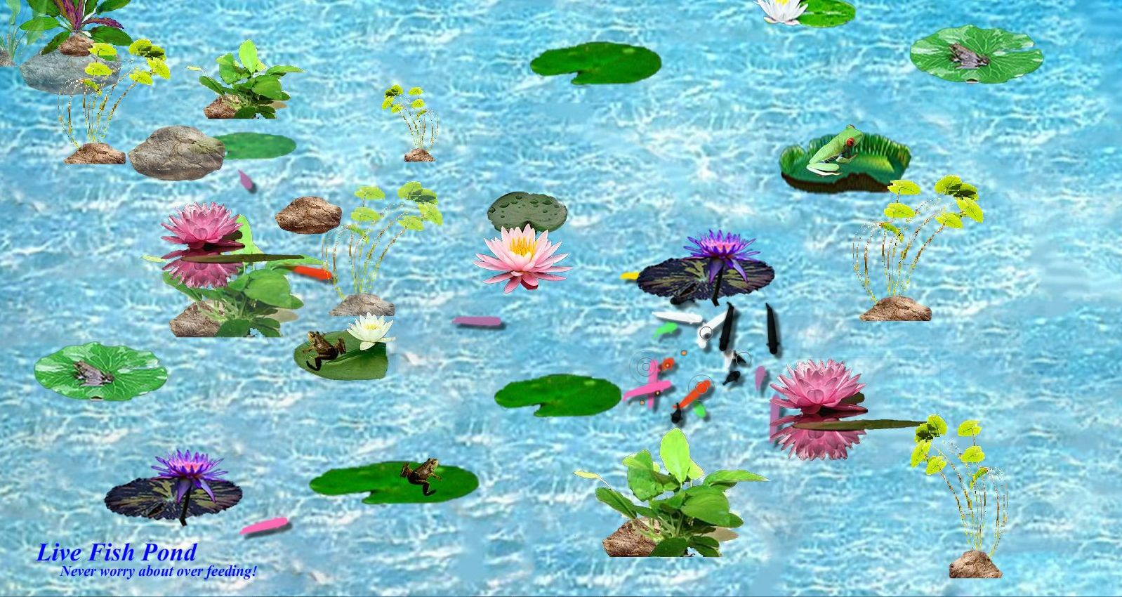 Live fish pond download 11street malaysia board games for Fish pond game