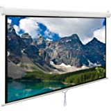 Pull Down Projector Screen 100 inch, Viewlex 100