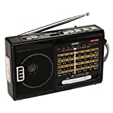 QFX R-39 AM/FM/SW 10 Band Radio with Flashlight and USB/TF Player