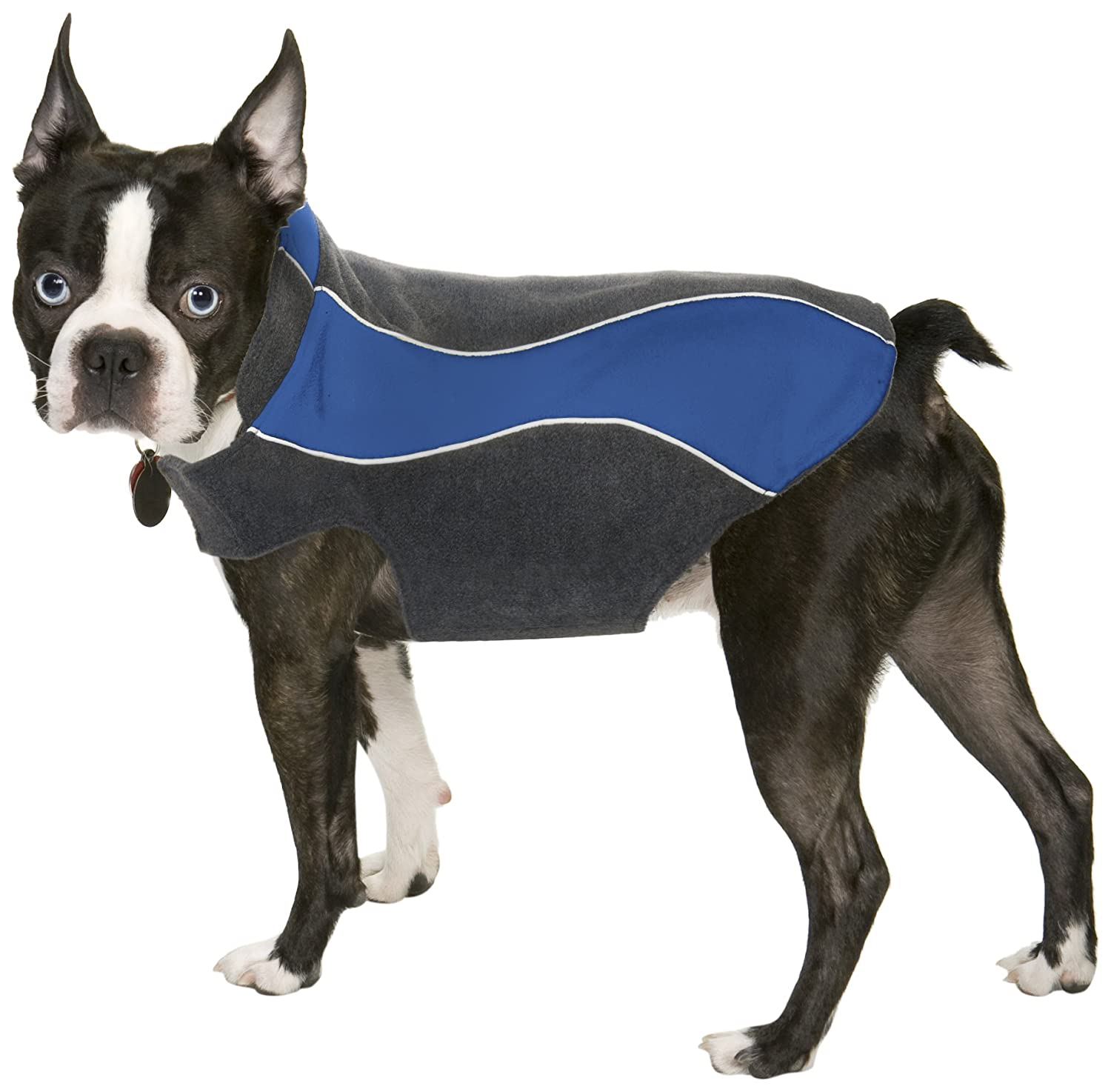 dog jacket reviews