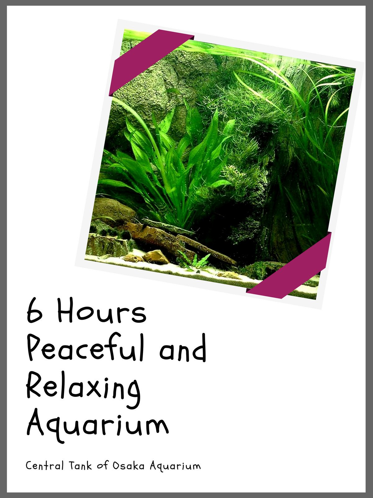 6 Hours Peaceful and Relaxing Aquarium on Amazon Prime Instant Video UK