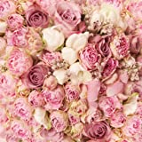 WOLADA 10X10ft Rose Floral Wall Wedding Photography Backdrop Art Fabric Studio Pink Flowers Wall Photo Backdrop 9604 (Color: 9604 10x10, Tamaño: 10x10ft)