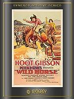 Wild Horse (1931)