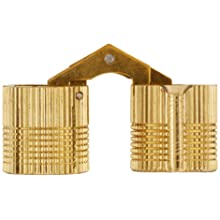 "SOSS Mortise Mount Invisible Barrel Hinge, Solid Brass, Satin Brass Finish, 18mm Diameter, 1-1/8"" Door Thickness, 17.5mm Mortise Depth (Pack of 24)"