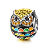 NinaQueen 925 Sterling Silver Owl Animal Bead Gold Plated Multicolor Enamel Charms for Pandöra Bracelets Birthday Anniversary Christmas Jewelry Gifts for Teen Girls Kids Sisters Daughter Girlfriend (Color: Orange)