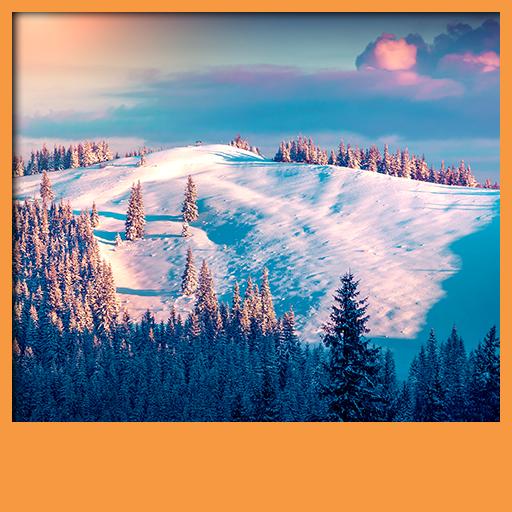 fonds-decran-winter-live