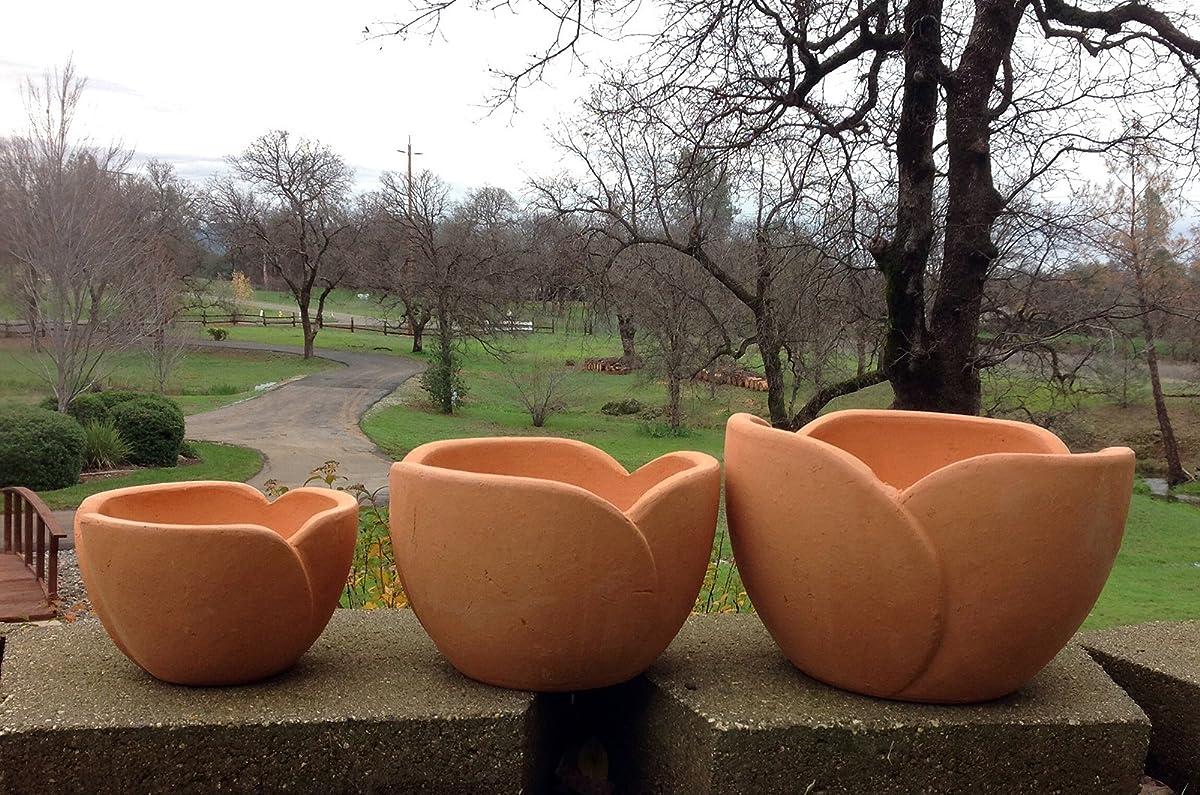 Terra Cotta Shaped Flower Pot