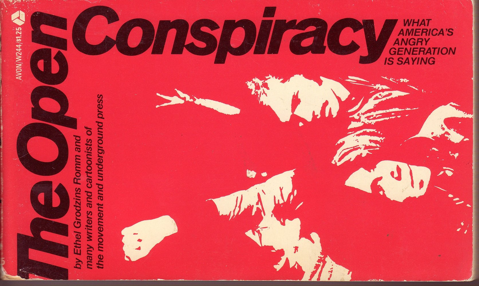 The open conspiracy: What America's angry generation is saying,, Romm, Ethel Grodzins