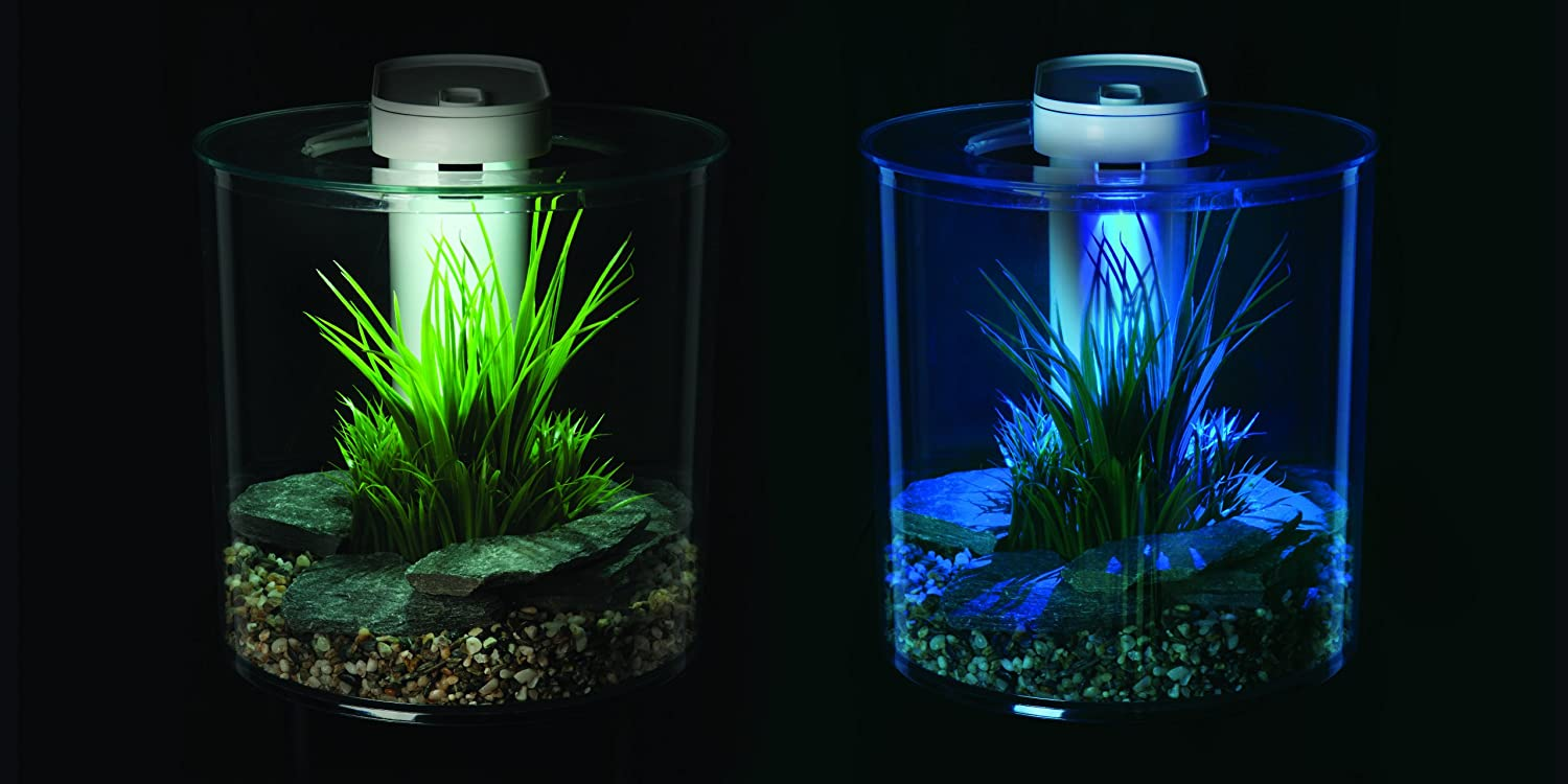 ... fish tank inc pump, led light & filter was ?45 now ?25.00 @ Pets at