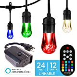 Enbrighten Works with Alexa WiFi Outdoor String Lights Kit: Vintage LED Color Changing Café Lights (24ft. 12 LED Bulb) + myTouchSmart WiFi Smart Plug, No Hub Required, Mobile and Voice Control, 45066 (Color: Black w/ Wifi Smart Plug, Tamaño: 24 ft.)