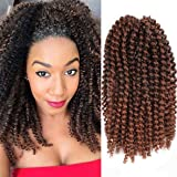 9 Pcs 8 Inch Ombre Marly Bob Crochet Braiding Hair Afro Kinky Curly Braids Hair Marlybob Twist Hair Extensions for Black Women T30# (Color: T30#, Tamaño: 9 Pcs)