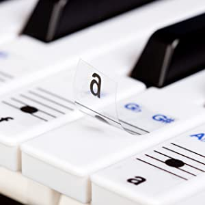 Plastic Removable Piano and Keyboard Note Stickers