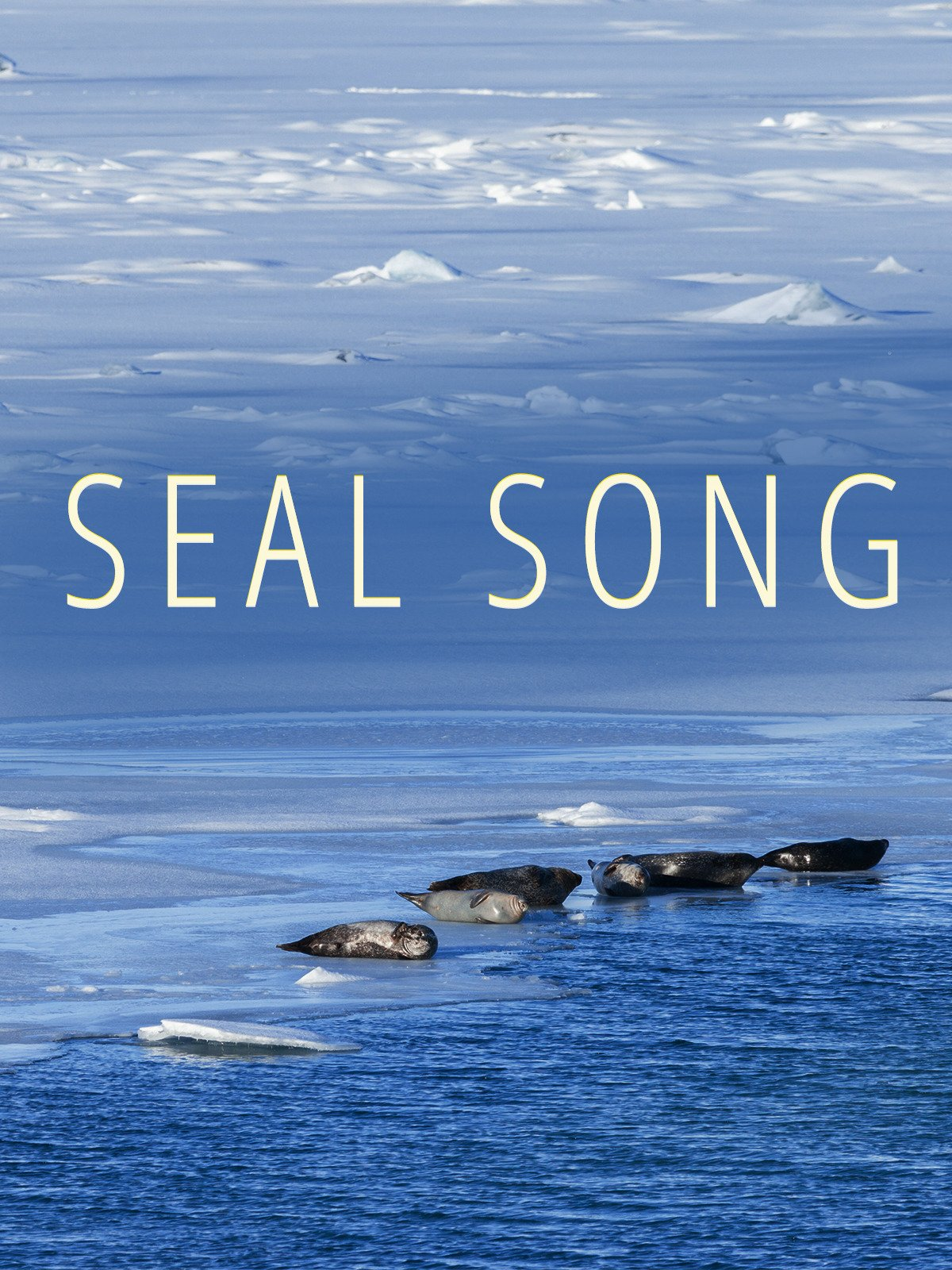 Seal Song on Amazon Prime Video UK