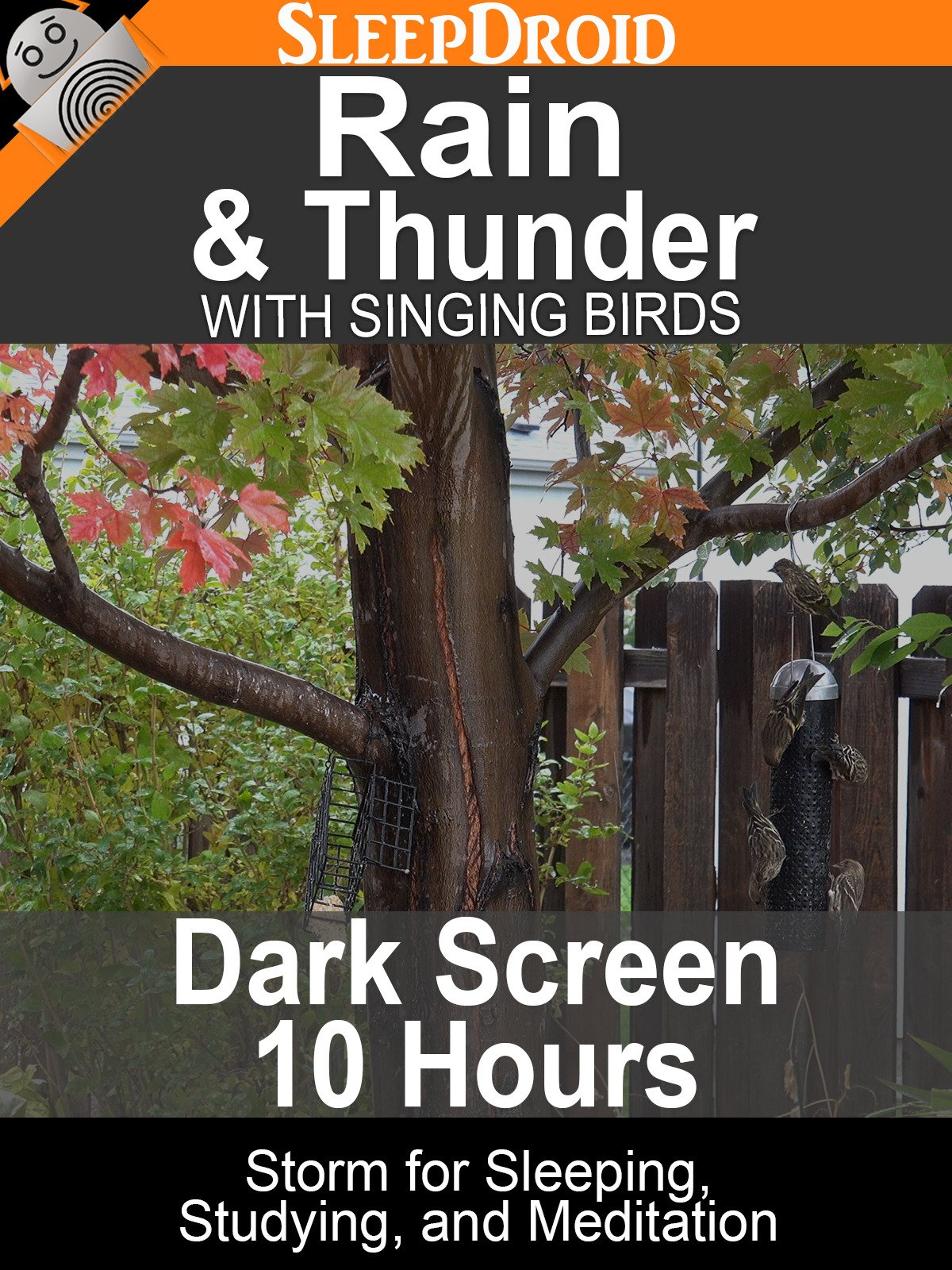Rain and Thunder with Singing Birds: Dark Screen 10 hours Storm for Sleeping, Studying, and Meditation
