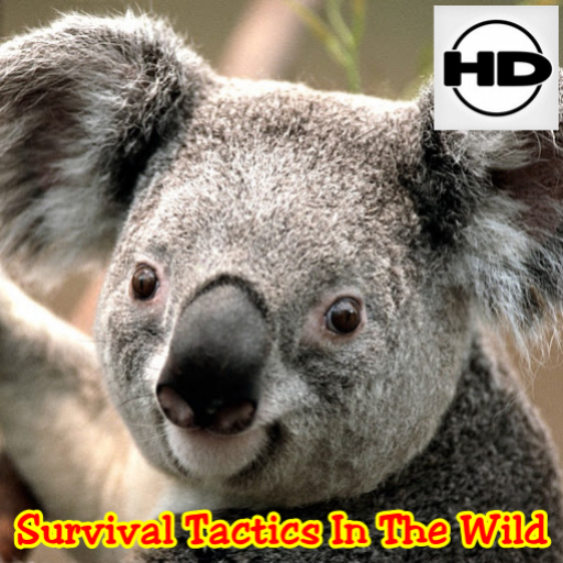Survival Tactics In The Wild
