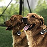 GPS Dog Tracker For 2 Dogs Real Time Tracking Collar APP Control Activity Monitor For Dogs Pets (2 Tracker) (Tamaño: 2 Tracker)