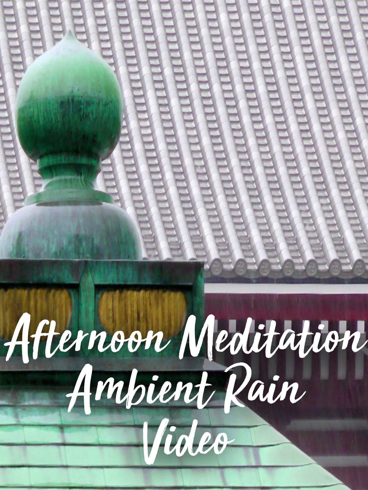 Afternoon Meditation Ambient Rain Video