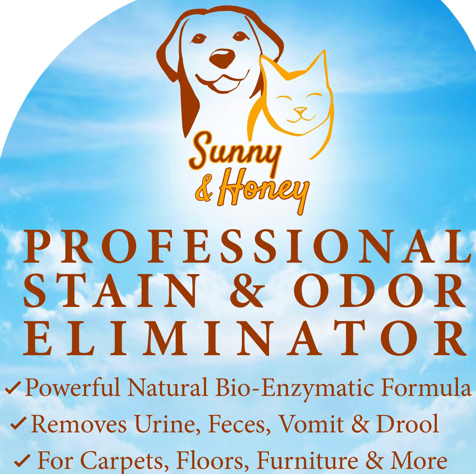 Dog Urine Carpet Stain Removal: Enzyme Cleaner, Pet Stain Remover, Odor Eliminator, Best