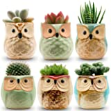 6pcs Owl Pot 2.5 Inch Succulent Plant Pot Mini Ceramic Flower Cactus Container Small Bonsai Pots with Hole