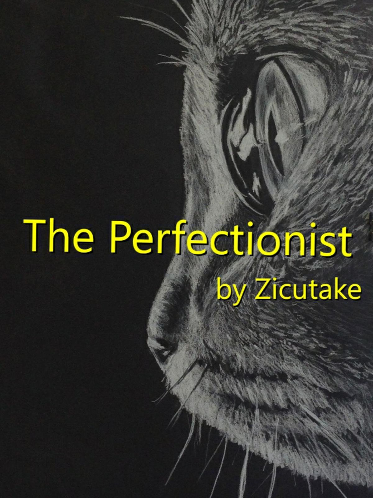 The Perfectionist on Amazon Prime Video UK