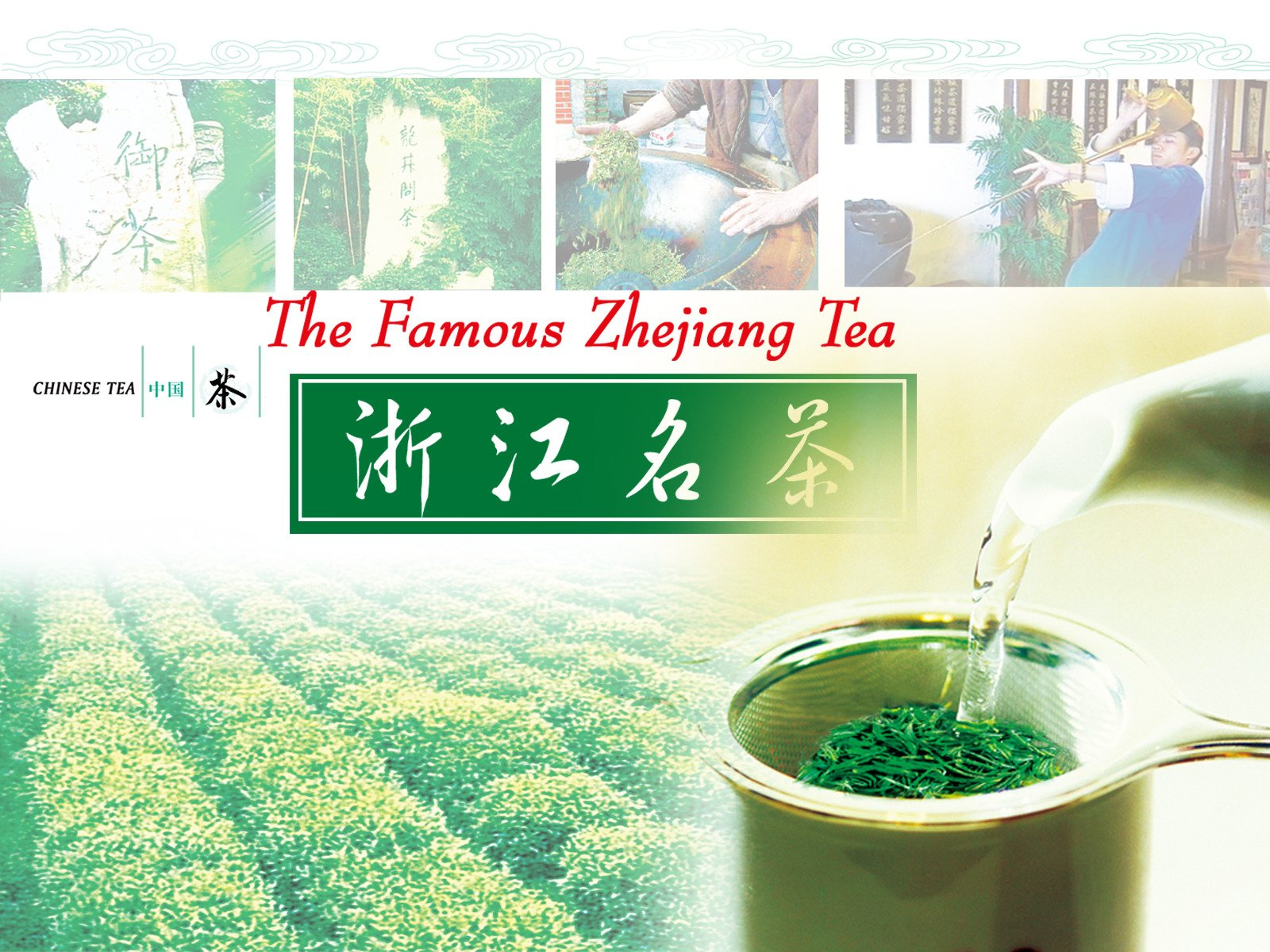 The Famous Zhejiang Tea - Season 1