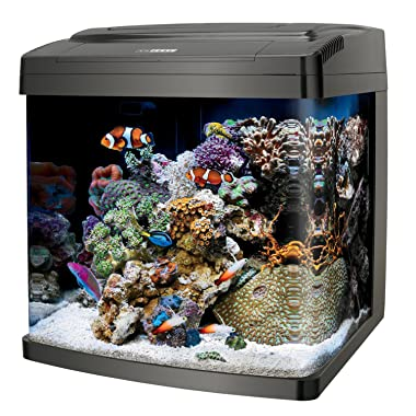 Best fish tanks 2017 reviews guides aquarium adviser for Bio cube fish tank