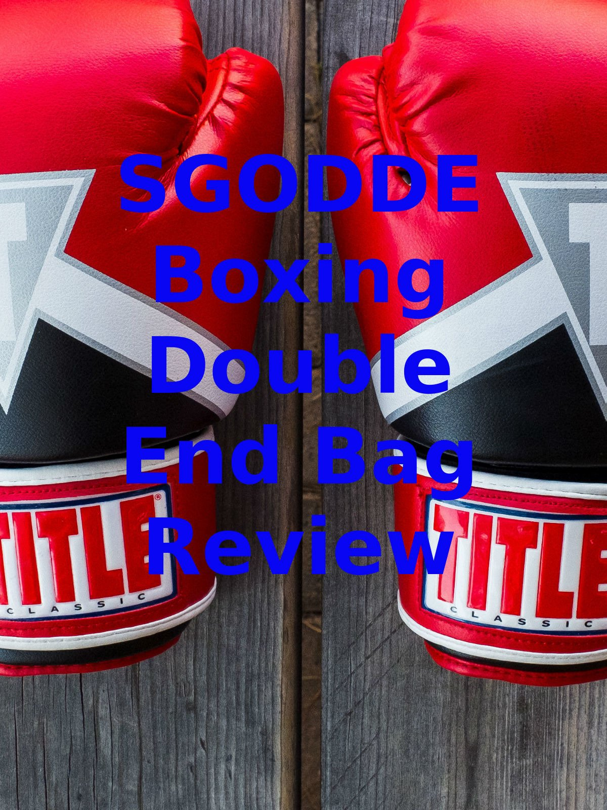 Review: SGODDE Boxing Double End Bag Review