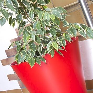 pot de fleur boite a a fleurs cache pot diametre 40 40 cm tubus rouge vif en. Black Bedroom Furniture Sets. Home Design Ideas