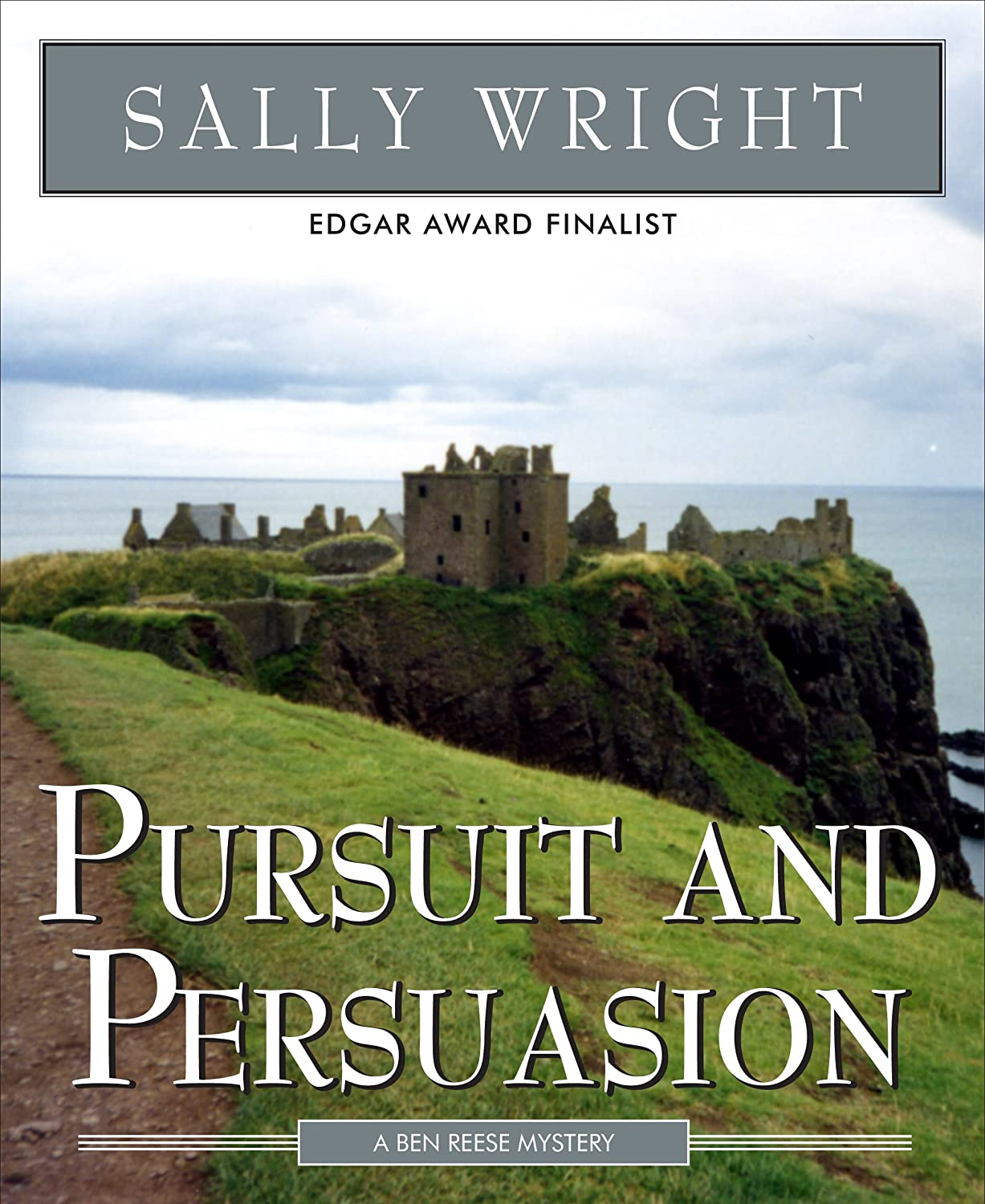 https://www.goodreads.com/book/show/10281944-pursuit-and-persuasion
