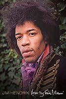 Jimi Hendrix - Hear My Train a Comin' [HD]