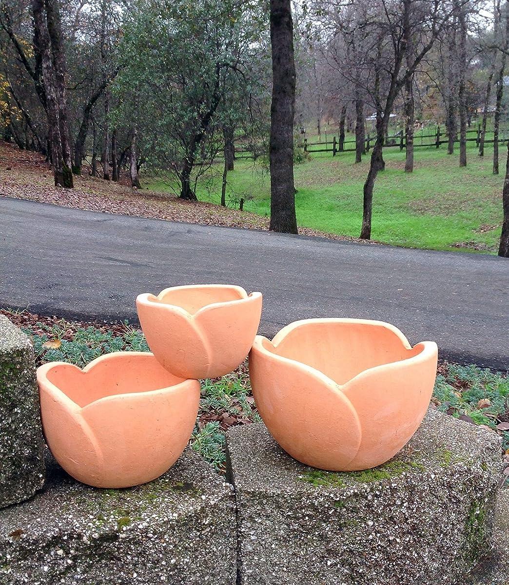 Terra Cotta Petal Shaped Flower Pot