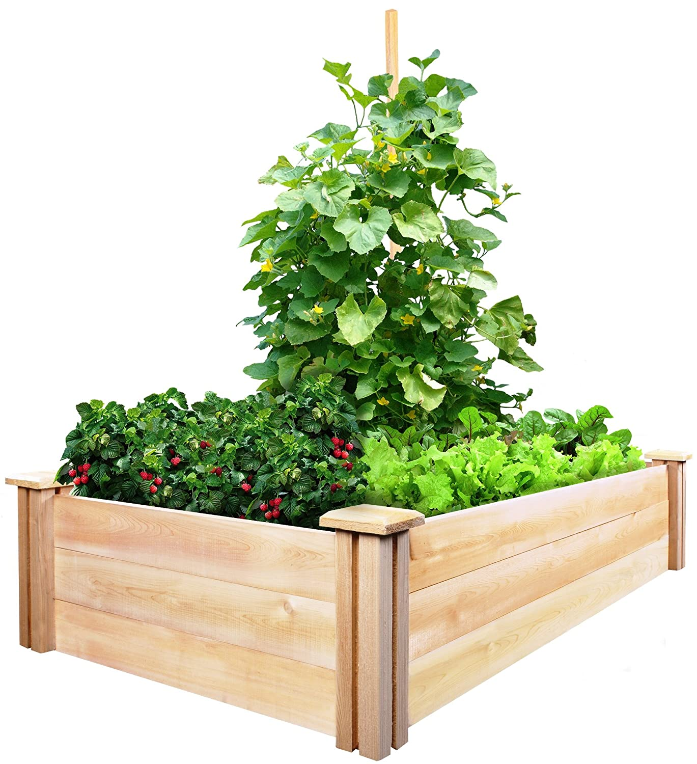 Raised Garden Bed Kits - Gift Ideas for Gardeners