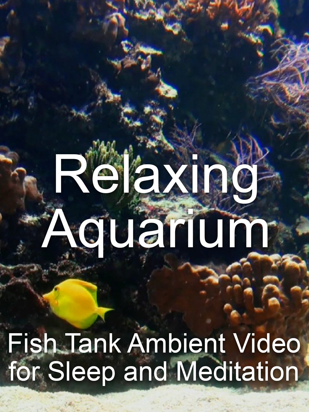 Relaxing Aquarium Fish Tank Ambient Video for Sleep and Meditation on Amazon Prime Instant Video UK