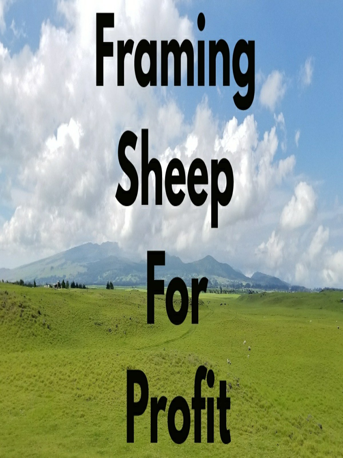 Farming Sheep For Profit