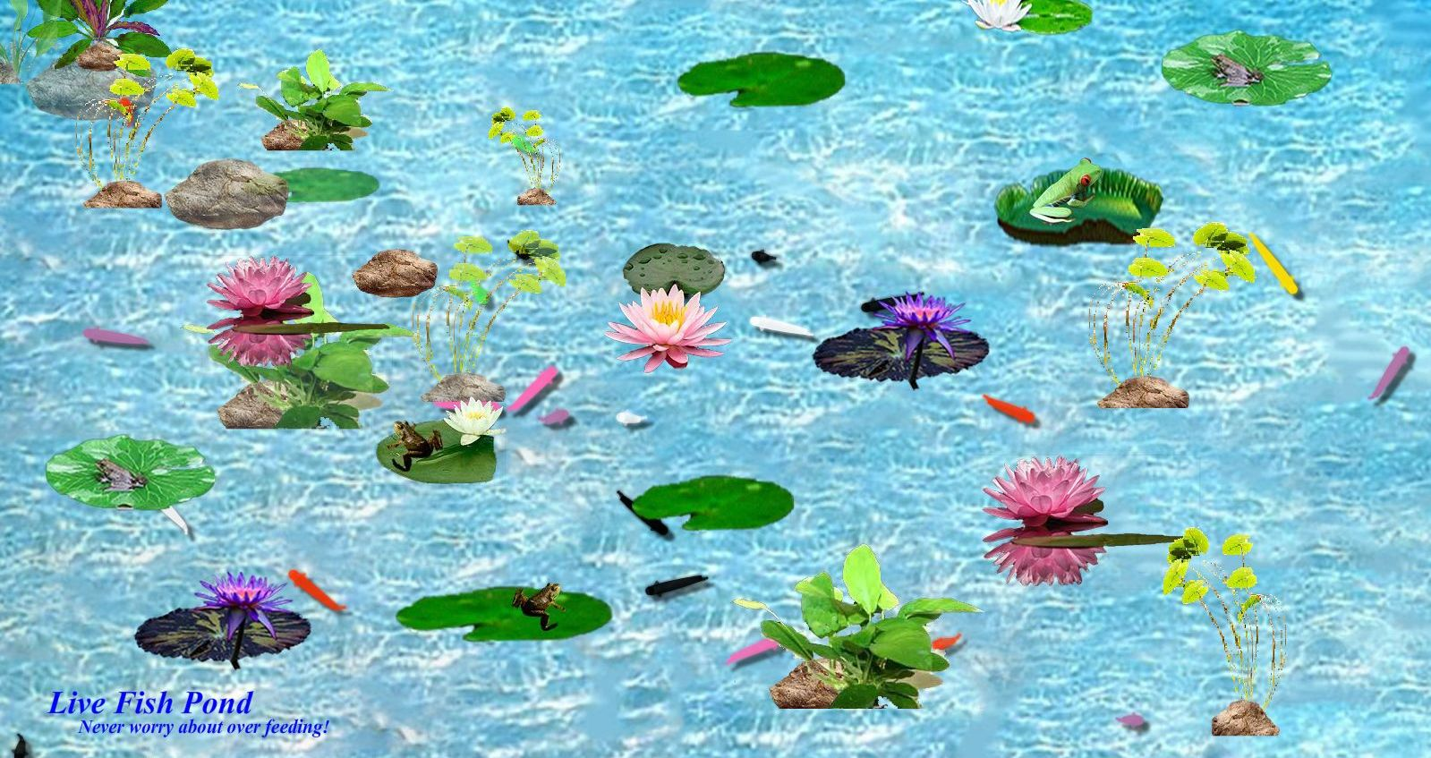 Live fish pond download 11street malaysia board games for Amazon fish ponds