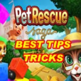 Tips Tricks Pet