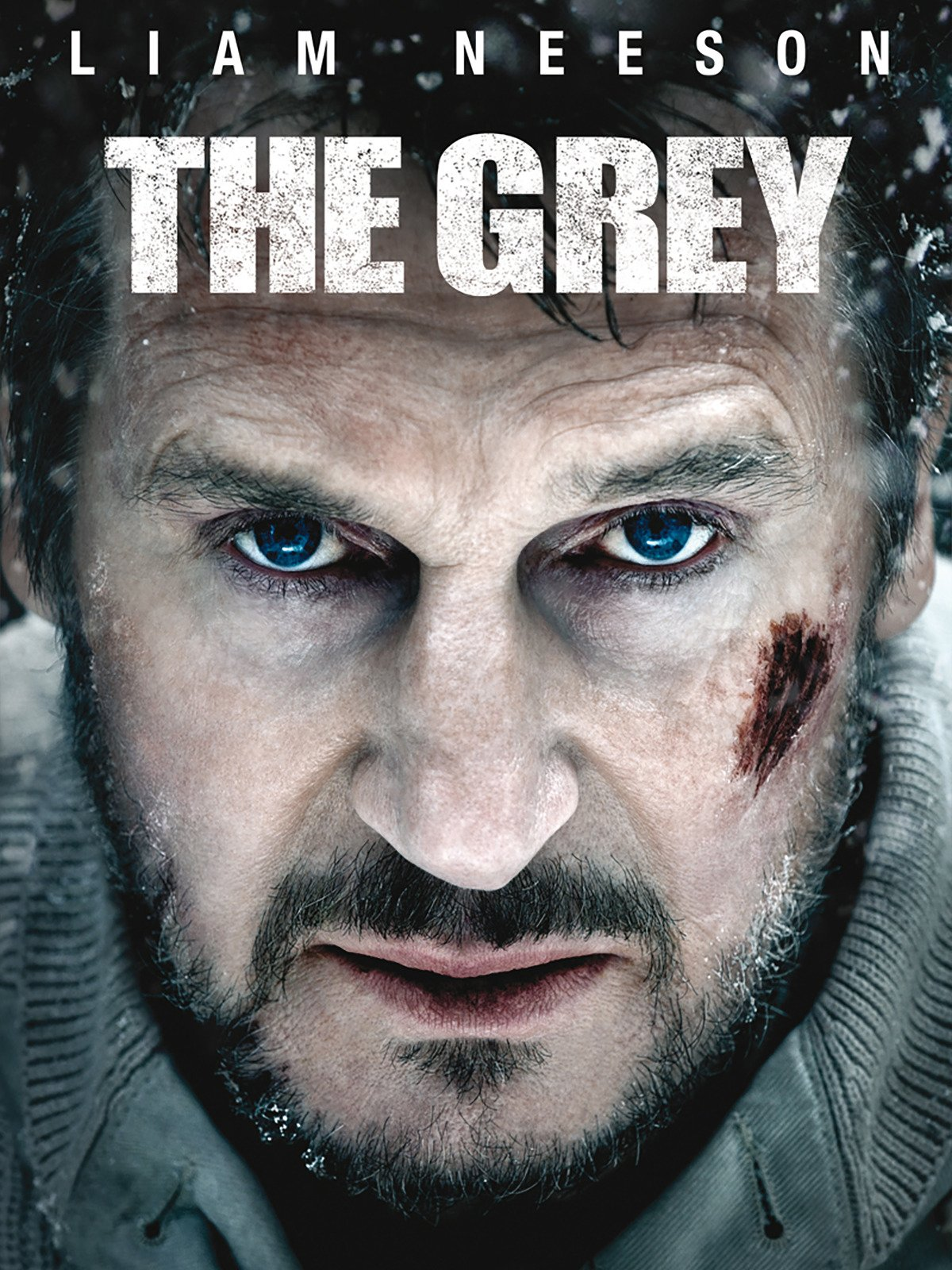The Grey