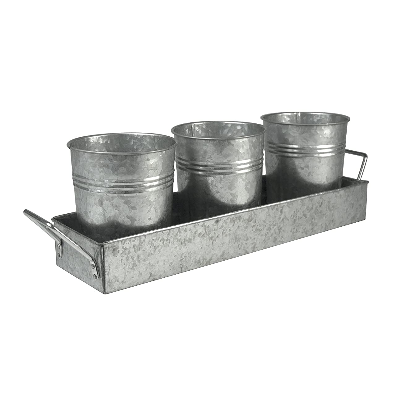 Oasis Picnic Caddy & Planter Set, Galvanized 0